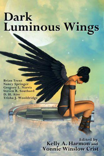 dark luminous wings anthology rebecca gomez farrell treasure